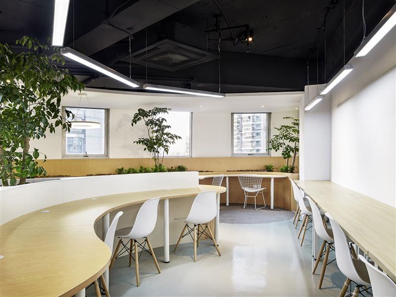 上海金山1000平方办公室亚搏电竞唯一官网